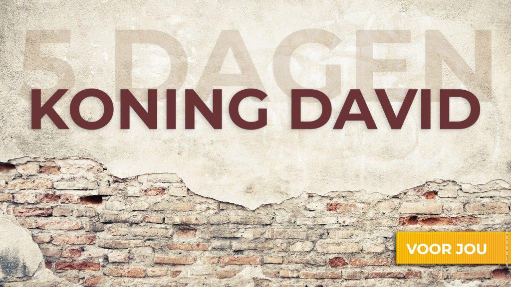 YV King David Plan Image NL